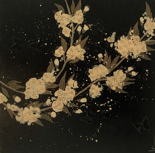 lily-greenwood2